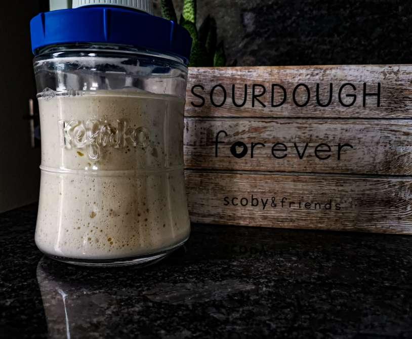 Fergusson sourdough in a 848ml Kefirko jar