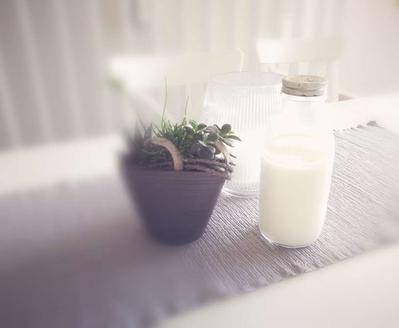 Milk kefir on table