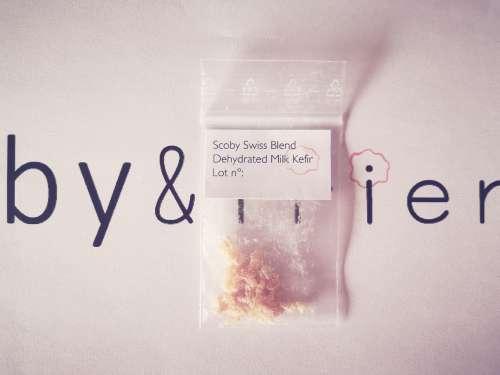 Scoby Swiss Blend Dehydrated Kefir Grains